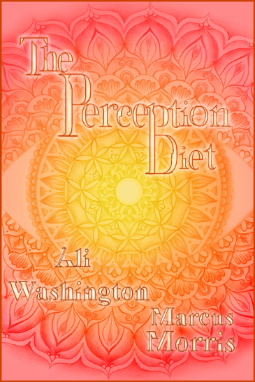 The Perception Trainers - The Perception Diet Book Cover